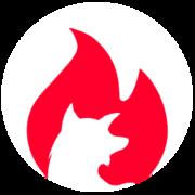 www.camp-firefox.de